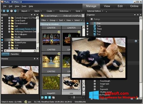 Screenshot ACDSee Photo Manager für Windows 8
