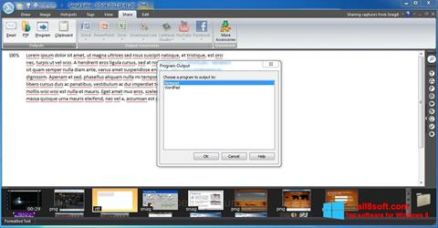 Screenshot Snagit für Windows 8