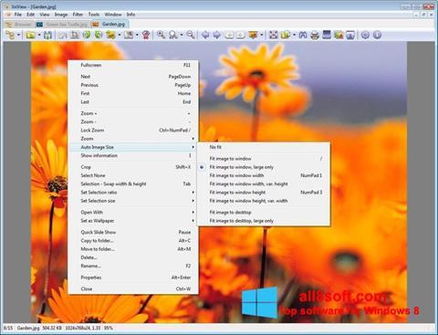 Screenshot XnView für Windows 8