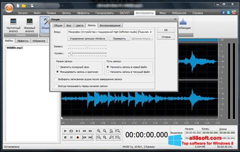 Screenshot AVS Audio Editor für Windows 8