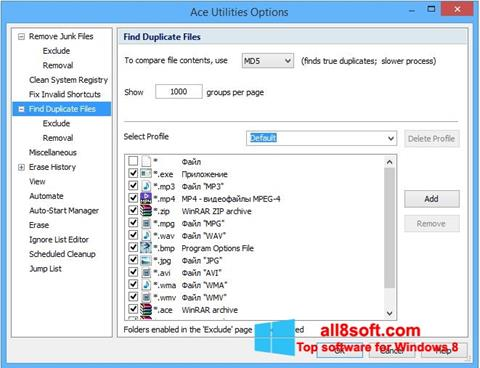 Screenshot Ace Utilities für Windows 8