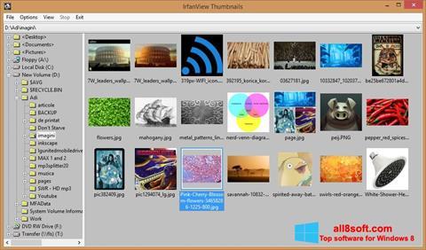 Screenshot IrfanView für Windows 8