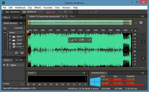 Screenshot Adobe Audition CC für Windows 8