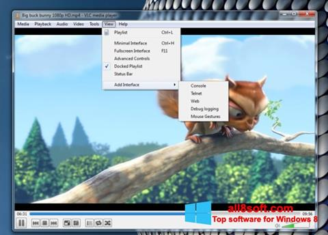Screenshot VLC Media Player für Windows 8